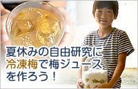 夏休みの自由研究に梅ジュースを作ろう