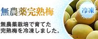 冷凍梅(無農薬完熟梅)販売・通販