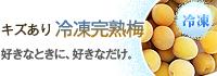 冷凍梅(キズあり完熟梅)販売・通販