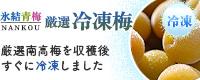冷凍梅(南高青梅)販売・通販