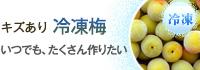 キズあり冷凍梅(南高青梅)販売・通販