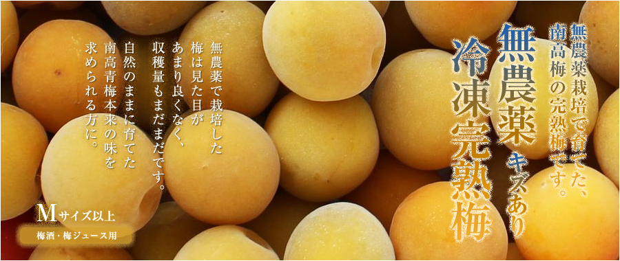 無農薬完熟南高梅を冷凍にした冷凍梅(平成30年度収穫の無農薬完熟梅)です。梅酒・梅ジャム・梅ジュースにお使い下さい。