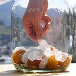 冷凍梅と氷砂糖を交互に入れます