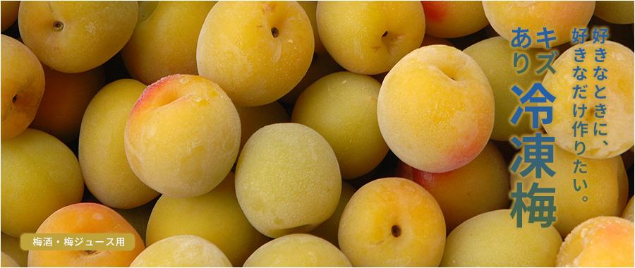青梅(紀州南高梅)を冷凍にした冷凍梅(令和3年度収穫の青梅)です。梅酒・梅ジュースにお使い下さい。